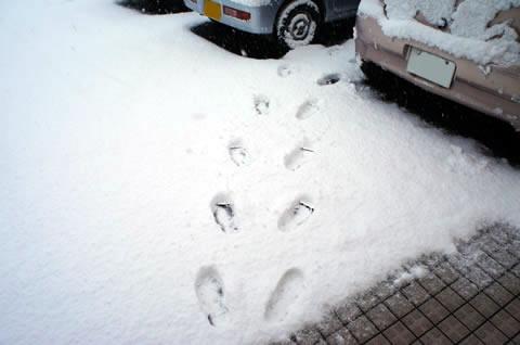 2012-01-24_01.jpg