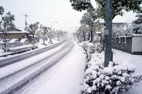 2012-01-24_03.jpg