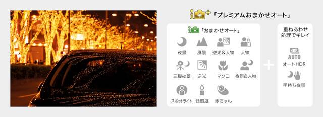 2014-01-23_alpha5000-06.jpg