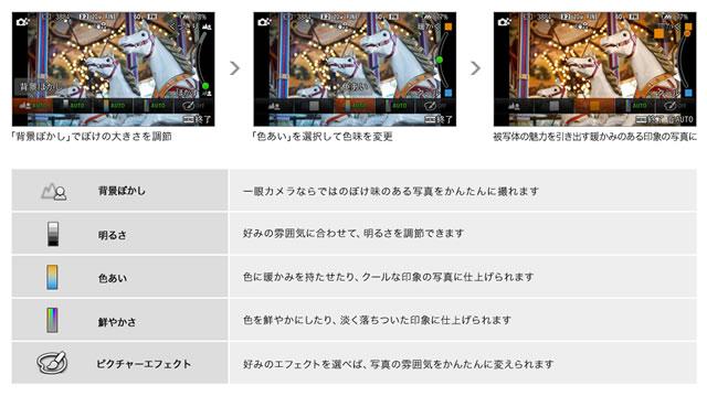 2014-01-23_alpha5000-08.jpg