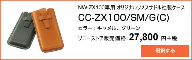 2015-09-08_hires-walkman-nw-zx100-ad05.jpg