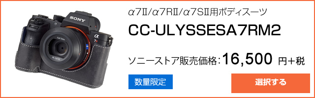 2016-04-02_sonystore-ulysses-camcase-ad01.jpg