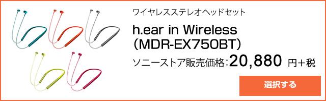 2016-06-24_fujirock-hires-ad03.jpg