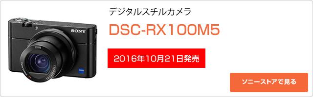 2016-10-14_dsc-rx100m5-ad01.jpg