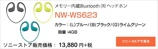 2017-04-27_walkman-nw-ws620-ad02.jpg