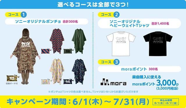 2017-06-03_nw-a30_pricedown-06.jpg