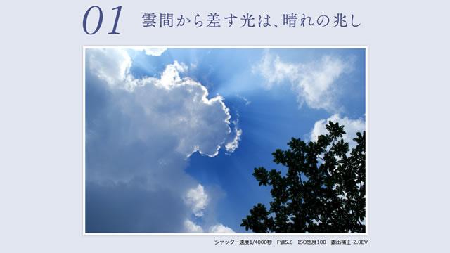 2017-06-29_alpha-shoshinsha-rainyday-01.jpg