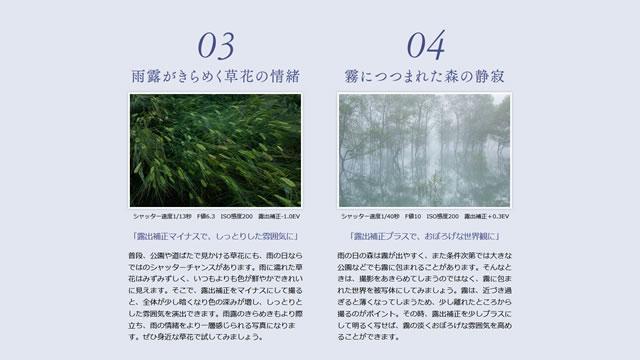2017-06-29_alpha-shoshinsha-rainyday-03.jpg