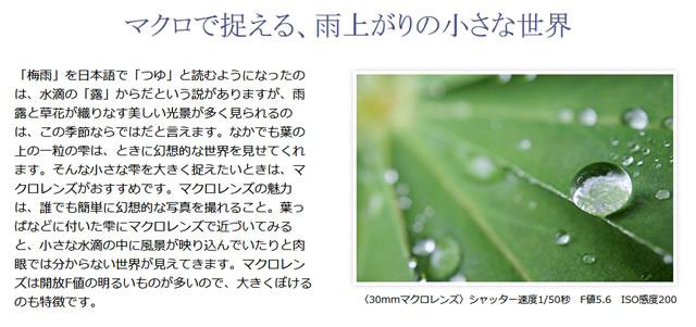 2017-06-29_alpha-shoshinsha-rainyday-10.jpg
