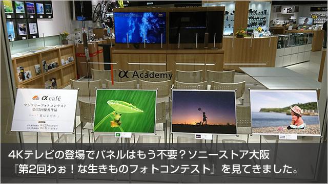 2017-08-23_sonystore-osaka-apla-photocon-00.jpg