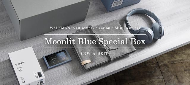 2017-09-05_walkman-zx300-a40-08.jpg