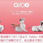 ソニーストア各店舗で1月11日より「aibo」の展示が開始! 実物を見て・触れて体験できて、お土産まで貰えちゃいます