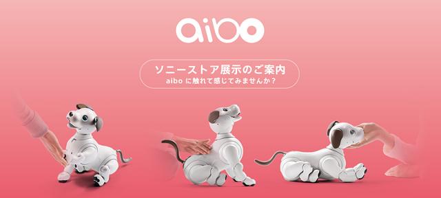 2018-01-10_sonystore-aibo-taiken-01.jpg