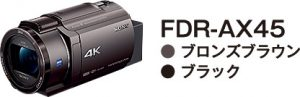 FDR-AX45